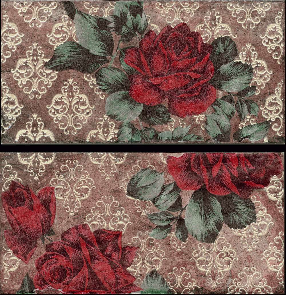 Serenissima Chicago INS.S/2 VINT.ROSES SOUTH SIDE 10x20